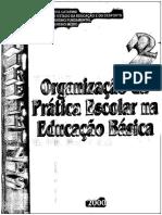 Diretrizes Para a Organização Da Prática Escolar Na Educação Básica 2000