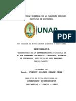 Monografia Diagnóstico de La Inraestructura Piscícola Alto Amazonas