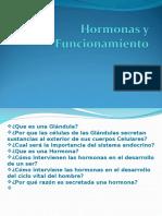 Hormonas y Funcionamiento 2012