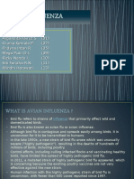 Avian Influenza Ppt