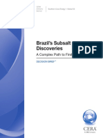 Brazil ´s discoveries
