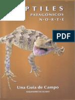Reptiles Pat Norte