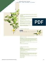 50 Medicamentos Herbarios Tradicionales