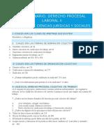 Cuestionario Derecho Procesal Laboral II