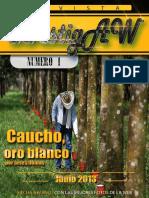 Revista InvestigAW 1 2013