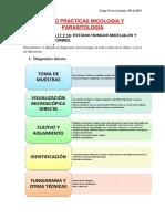 Anexo Prácticas Micología y Parasitología