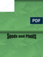 Seeds and Plants