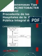 EXP Acineto