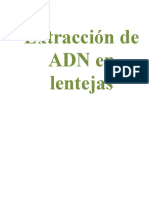 Extracción ADN, Conceptos y Práctica de laboratorio