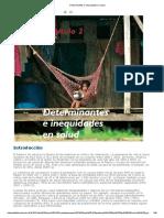 Determinantes e Inequidades en Salud