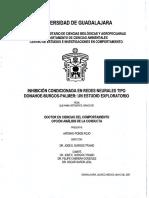 Tesis Doctoral - Redes Neuronales - Seleccionismo