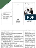 Principios de la Organización.doc