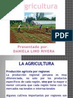 Agricultura Peru