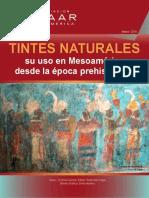Tintes Mesoamerica PDF