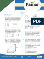 Fisica_Tarea_Sem_2.pdf