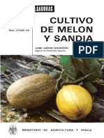 Cultivo de Melon