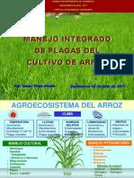 Sanidad y Manejo de Plagas en Arroz - Cvr - 160711