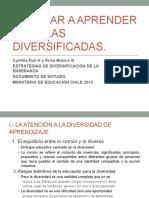 Enseñar a Aprender en Aulas Diversificadas