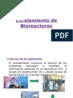 Escalamiento de Bioreactores Introduccion