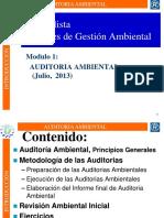 1.1 Introduccion Aud Amb__ 08072013