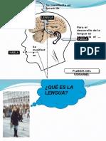 Variaciones linguísticas