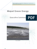 Mapal Executive Summary