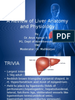 A Review of Liver Anatomy and Physiology
