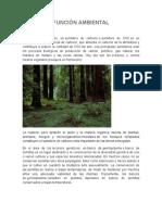 FUNCIÓN AMBIENTAL DE UNA CUENCA HIDROGRAFICA