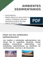 AMBIENTES SEDIMENTARIOS.pptx