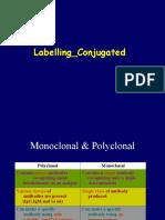 IHK Labelling 2013