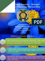 Assessing Kidney Function — Measured