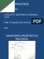 Prostata Hpb