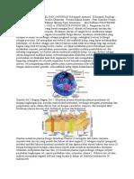 Anatomi Fisiologi Sel Dan Jaringan Kelompok Anatomi