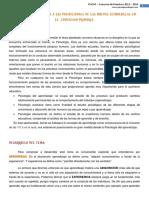PSICOLOGÍA El Aprendizaje Frente a Las Posibilidades de Las Nuevas Tecnologías en La Educación Primaria1