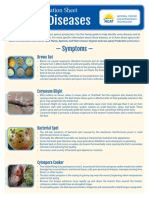 apricot_diseases_diagnostic_key.pdf