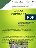 doina_ppt