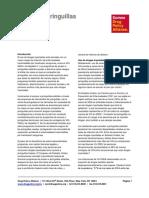 DPA_Hoja Informativa_Acceso a jeringuillas esteriles (Febrero de  2016).pdf