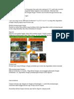 Biogas Kotoran Sapi