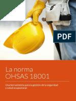 LIBRO - La Norma OHSAS 18001. Una Herramienta Para La Gestión de La Seguridad y Salud Ocupacional