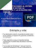 Cancer y entropia
