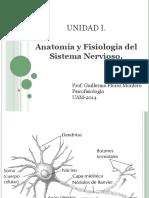 Anatomía y Fisiología Del Sistema Nervioso.