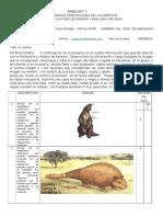 Prehistoria de animales y artesanía en Panamá