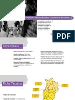 articles-37187_2010UDP_Presentacion (1).pdf