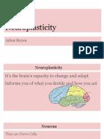 neuroplasticity project - arlen reyes