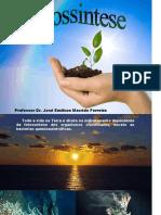 Fotossíntese das plantas