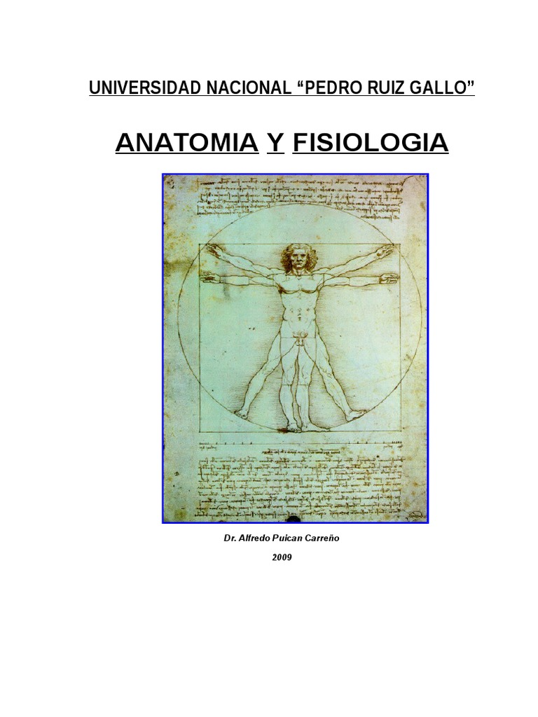Anatomia 2016