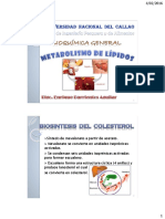 Cap 10.- Metabolismo de Lípidos B