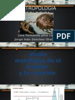 antropologia teologica . metafisica , pascal