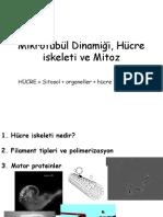 Kromozom Biyolojisi 2'