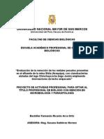 Proyecto_fina_revisados7